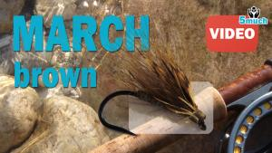 March brown